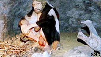Neandertal Museum in Mettmann