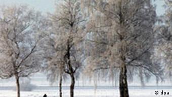 verschneites Chiemgau