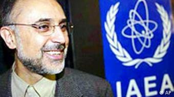 علیاکبر صالحی، رئیس سازمان انرژی اتمی ایران