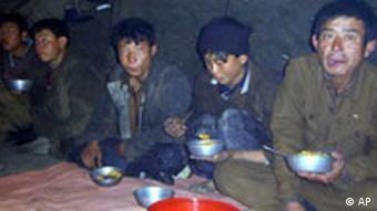 Hungernde nordkoreanische Bergarbeiter (Foto: ap)