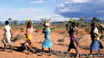 Kampf gegen Bodenerosion in Kenia