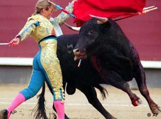 Bullfighting and the ban of the sport in catalonia
