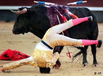 A bullfighter is knocked over by a bull