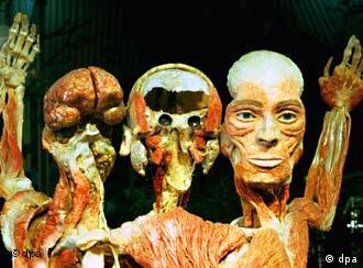 Oberhausen; 29.01.2000: Anstatt Leichen in formalingefüllten Behältern zu konservieren, arbeitet der Anatom Gunther von Hagens nach einem von ihm entwickelten Verfahren, das er Plastination nennt. Er entzieht dem Gewebe Wasser und Fett und füllt es mit Kunststoff. Der härtet aus, so dass die Organe plastisch bleiben. Sie sind ewig haltbar, geruchsfrei und nicht mehr in einem Glas versteckt. Von Hagens hat die Ausstellung Körperwelten erfunden.