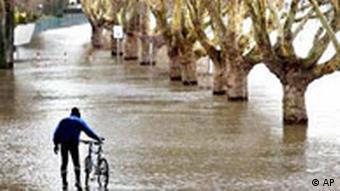 Fahrradfahrer am Rhein bei Rüdesheim