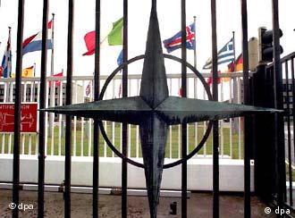 NATO Genel Sekreteri, dünya polisi olmak istemediklerini söylüyor