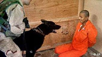 A US. soldier holding a dog in front an Iraqi detainee at Abu Ghraib prison
