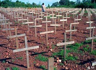 A field of simple crosses marking graves