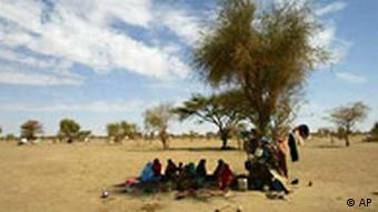 A group of Sudanese refugee's rest under the shade off a tree