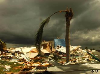Damage caused by hurricanes costs insurers billions each year