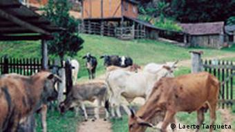 Landleben in Brasilien
