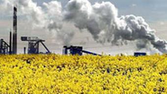 Rapsfeld Industrielandschaft