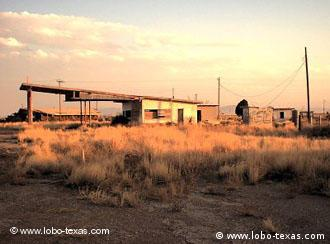A group of Germans are clearing away the tumbleweeds in Lobo