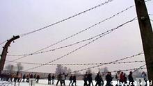 Oranienburg (Brandenburg): Eine Besuchergruppe geht am 27.01.2004 am Tag des Gedenkens an die Opfer des Nationalsozialismus hinter der Kulisse des Zaunes im ehemaligen Konzentrationslager Sachsenhausen nahe Oranienburg entlang, fotografiert durch den Stacheldraht. Am 27. Januar 1945 hatten sowjetische Truppen das Konzentrations- und Vernichtungslager Auschwitz befreit. Dieser Tag ist 1996 vom früheren Bundespräsidenten Roman Herzog zum Nationalen Gedenktag für die Opfer des Nationalsozialismus erklärt worden. (PDM44-270104)