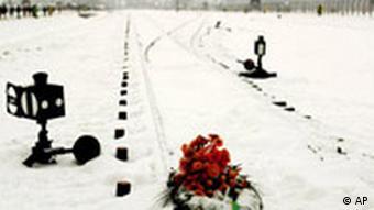 Polen Jahrestag Konzentrationslager Auschwitz Blumen