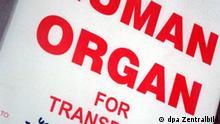 In einer speziellen Kühlbox befindet sich eine Spenderniere, die für eine unmittelbar bevorstehende Transplantation in der Klinik für Urologie der Jenaer Friedrich-Schiller-Universität vorgesehen ist (Archivfoto vom 29.5.1998, Illustration zum Thema Organspende). Durch Organspenden haben sich erstmals in Deutschland sechs Patienten wahrscheinlich mit lebensgefährlicher Tollwut infiziert. Foto: Jan-Peter Kasper (zu dpa 0165 vom 17.02.2005) +++(c) dpa - Report+++