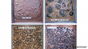 Manganknollen in verschiedenen Größen (Foto: BGR)