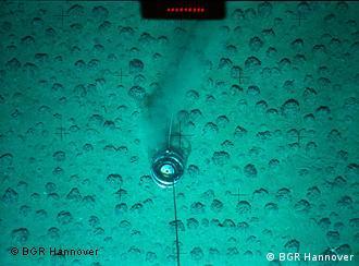 Manganknollen auf dem Meeresboden (Foto: BGR Hannover)