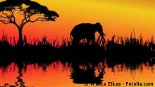 Afrika Elefant Silhouette