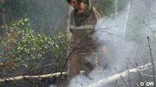 Titel: Waldbrände in Russland - 3 Beschreibung: Im Wald sind die Folgen eines Brandes direkt zu sehen Schlagworte: Waldbrände, Russland, Greenpeace, freiwillige Helfer, Feuerwehr Jahr/Ort: 2011/Russland Dieses Foto hat unser Korrespondent in Russland Egor Winogradow gemacht. Die Rechte wurden an DW durch den Autor und die abgebildete Person(en) übertragen.