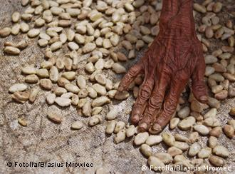 为了保障本国供应,中国也想插手非洲农业?