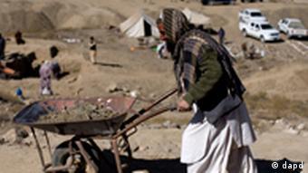 Ein internationales Team von Archäologen arbeitet mit Hochdruck an den Ausgrabungen (Foto: AP Photo/Dusan Vranic)