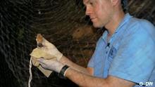 Wissenschaftler Stefan Drosten mit Fledermaus während eines Forschungsprojektes in Ghana; Mai 2011 Ghana; Copyright: DW/Aygül Cizmecioglu