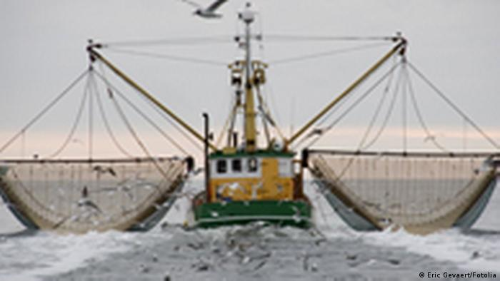 Fish Fight Trawler (Eric Gevaert/Fotolia)