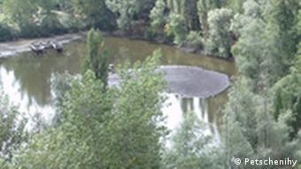Заповедная зона под Харьковом