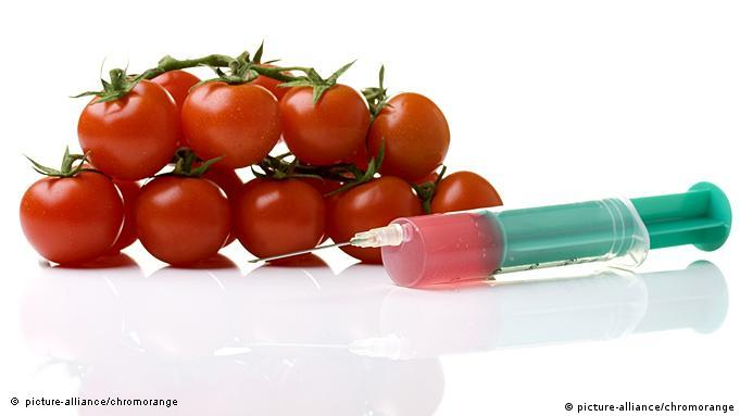 Rajčice moraju biti kao sa slike