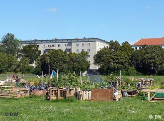 urban agriculture blossoms in berlin scene in berlin dw. Black Bedroom Furniture Sets. Home Design Ideas