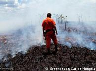 No Brasil, Greenpeace denuncia desmatamento e luta contra novo Código Florestal