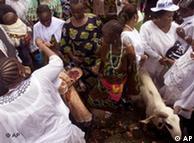 Sacrificos de animales en Nigeria, África.