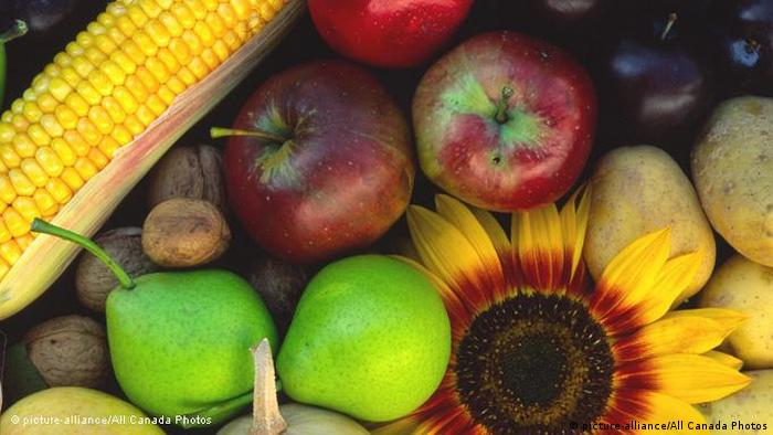 Apples, pears, corn and flowers (picture-alliance/All Canada Photos)