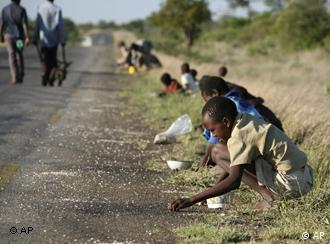 FILE - In this Dec. 14, 2008 file photo, children and their parents pick corn kernels spilled on the roadside by trucks ferrying corn imported from South Africa, in Masvingo 239 kilometers (148.5 miles) south of Harare. As the season of hunger and disease approaches, aid workers in Zimbabwe are worried about the disarray in government and how it will affect the most vulnerable in Zimbabwe. (AP Photo/Tsvangirayi Mukwazhi, File) Für Projekt Destination Europe Mangelnde Perspektiven und große Träume