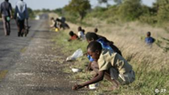 children and their parents in Zimbabwe pick corn kernels spilled on the roadside by trucks