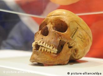 one of the Namibian skulls being returned