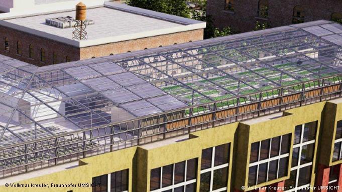 Ein Gewächshaus auf einem Dach in den USA(Foto: Volkmar Kreuter, Fraunhofer UMSICHT) undatiert, eingestellt November 2011