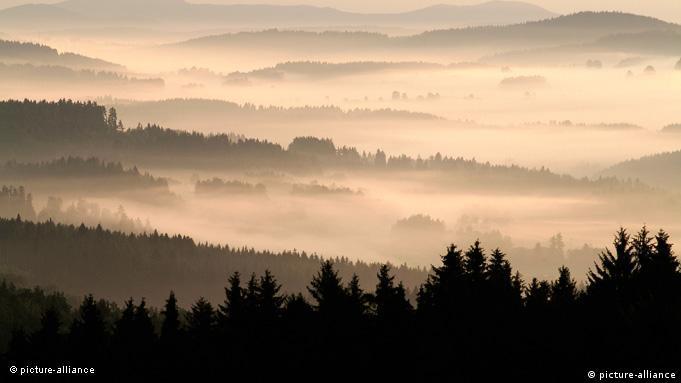 Flash-Galerie Blick über Waldlandschaft in Südböhmen Tschechien