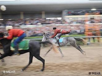 مسابقات اسبدوانی در ایران، تاختوتاز اسبهای وارداتی