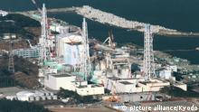 Fukushima Kernkraftwerk