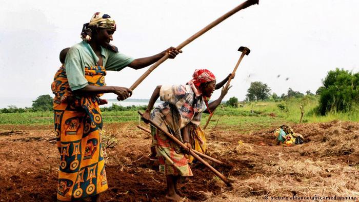 Women working in a field in Burundi