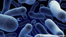 Realistic rendering of bacteria cells; bacteria; virus; medical; microbes; macro; biology; 3d; diseases; microscope; blood; sick; microscopic; infections; health; medicine; human; electron; science; render; technology; microbiology; close; micro; small; nano; life; sem; scanning; hiv; scientific; death; illustrations; genetics; cancer; tiny; molecules; attack; experiment; illness; epidemic; abstract; background; doctor; ill; sickness; design; business; computer; internet