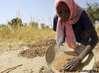 Comida e mudanças climáticas: segurança alimentar em perigo