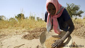Sudanesische Bäuerin reinigt ausgedroschene Sorgum-Körner