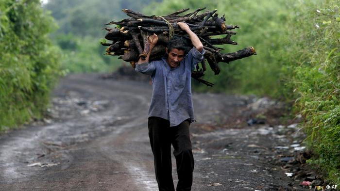A Nicaraguan man carries firewood in Managua, Nicaragua, Thursday Oct, 20, 2005. Environment ministers of Central America are participating in a Donors Forum of the Central American Commission of Environment and Development (CCAD-2005) Thursday and Friday. According details of CCAD, in Central America400 thousand hectares of forests are destroyed each year. (AP Photo/Esteban Felix)