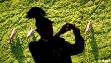 Berlin/ Ein Besucher in bayerischer Tracht fotografiert am Freitag (20.01.12) auf der Internationalen Gruenen Woche in Berlin vor dem Luftbild einer Kuhweide. Auf der Gruenen Woche praesentieren 1.624 Aussteller aus 59 Laendern ihre Angebote. Die Veranstalter erwarten bis zum 29. Januar rund 400.000 Besucher. (zu dapd-Text) Foto: Axel Schmidt/dapd