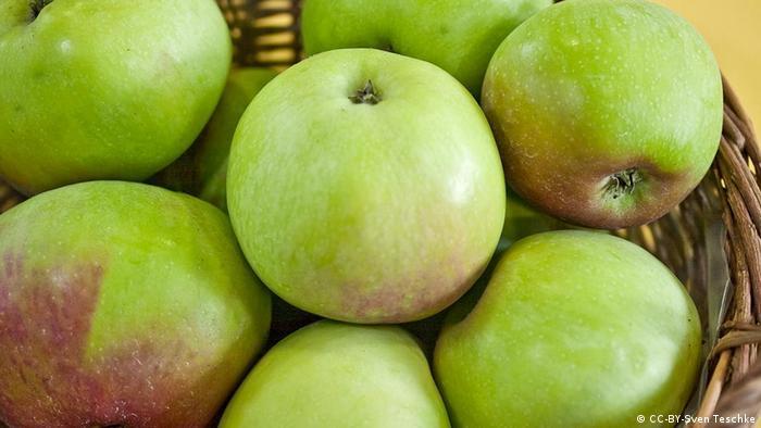 Symbolbild Apfel