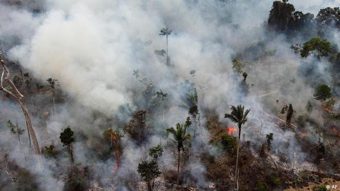 Illegal forest burning in Brazil
