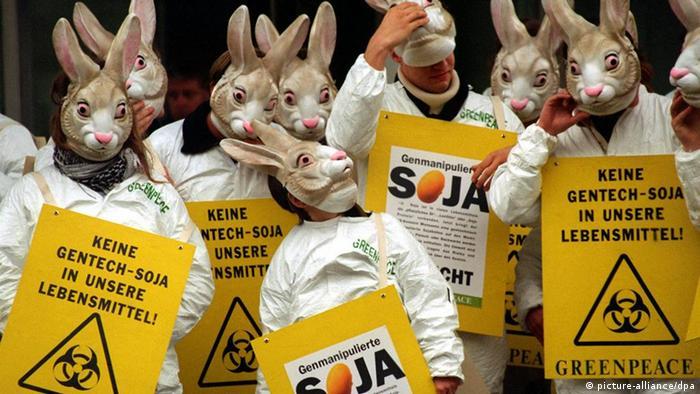 Activistas de Greenpeace protestan en Alemania contra los transgénicos. (Archivo).